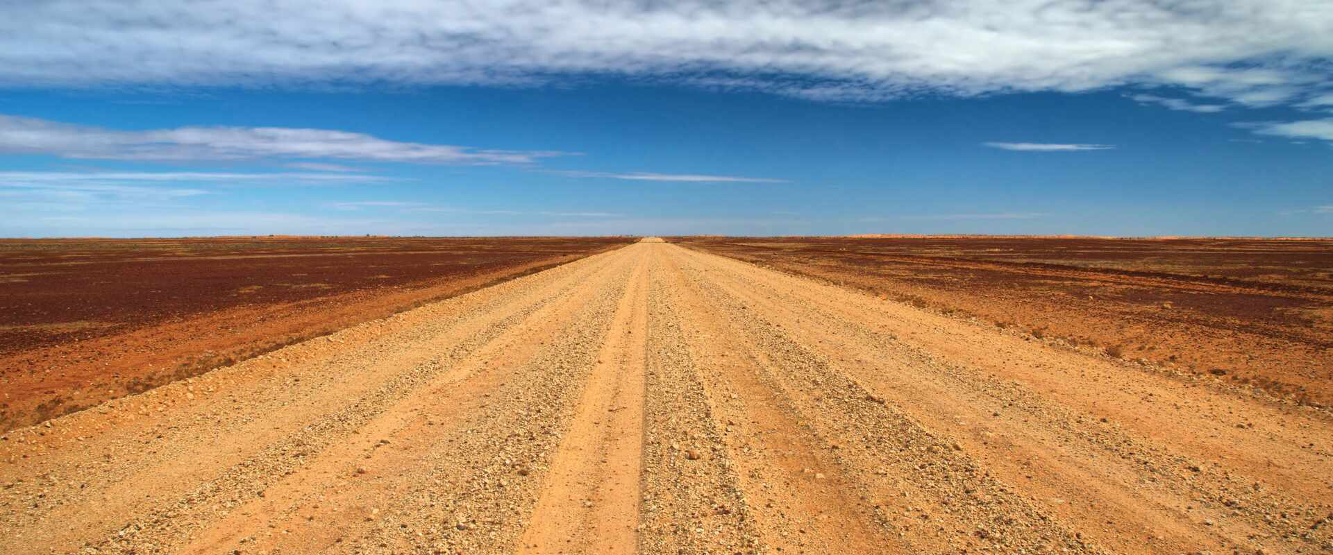 View of the Birdsville track into the distance, from ground level