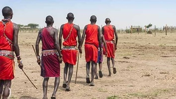 Back view of 5 African men in tribal dress walking across desert, Kanya