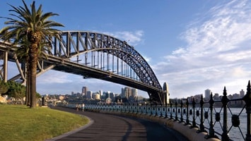 Harbour Bridge with asphalt path and palm tree in foreground, Australia
