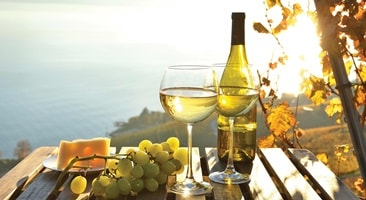 Two glasses of white wine, cheese and grapes on the table at sunset