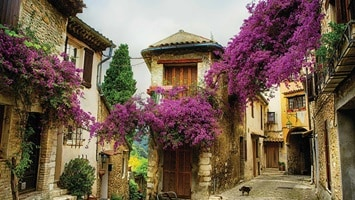 Traditional stone buildings covered in vibrant bougainvillea, France