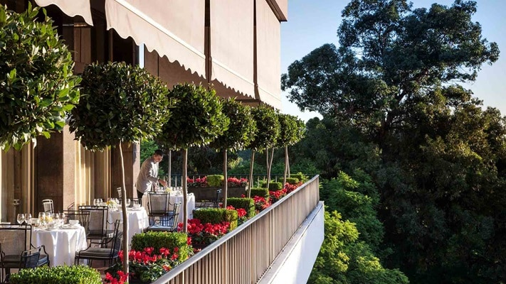 Dining on the terrace with topiary plants and red flowers