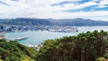 Long distance panoramic view of city with water and vegetation in foreground, New Zealand