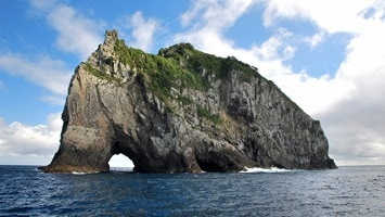 Hole in rock, Motukokako Island, New Zealand