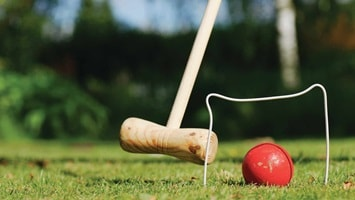 Wooden bat, wire net and red ball, generic