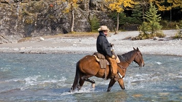 Man on a horse wading through the river with trees in the background