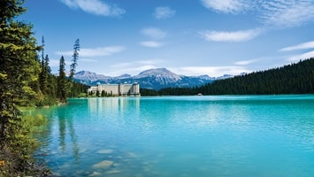 Turquoise still waters of Lake Louise surrounded by forest