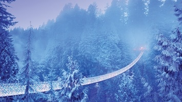 Suspension bridge traversing the valley among the snow covered pine trees