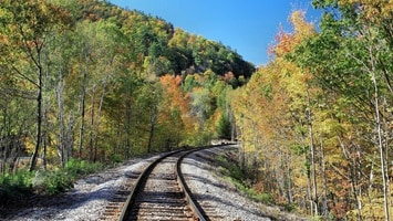 Train tracks through lovely autumn trees alongside the track, USA