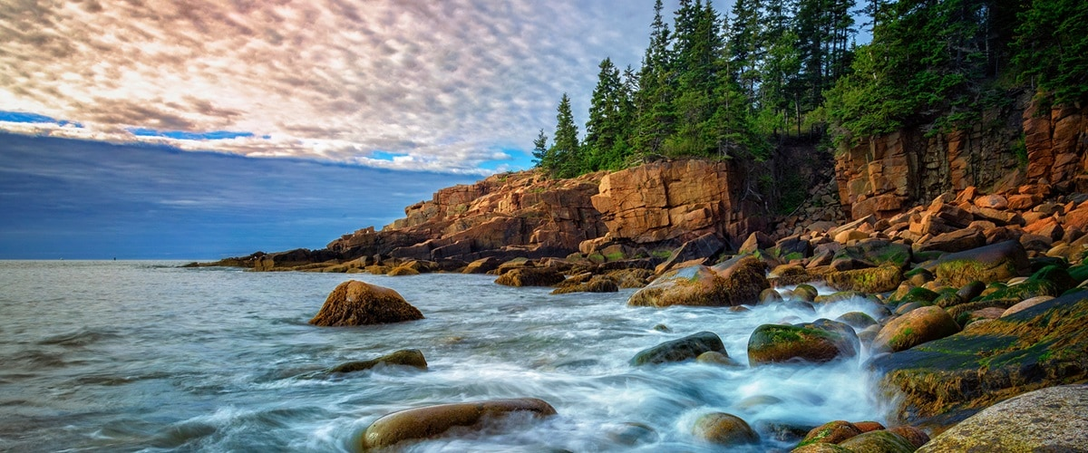 Rugged coastline with pine trees and rocky cliffs, Maine, USA