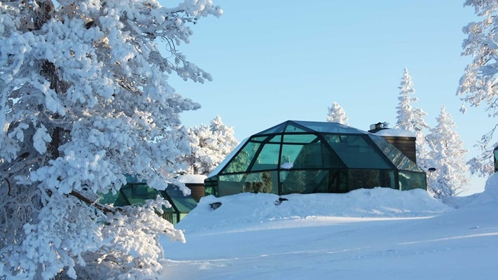 Glass igloo surrounded by snow covered ground and trees during the day