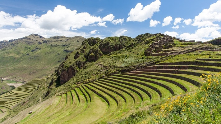 Green terraces of Sacred Valley, Peru